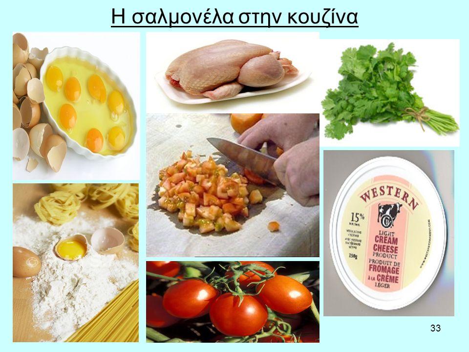 33 Η σαλμονέλα στην κουζίνα