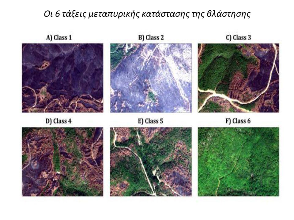 Οι 6 τάξεις μεταπυρικής κατάστασης της βλάστησης