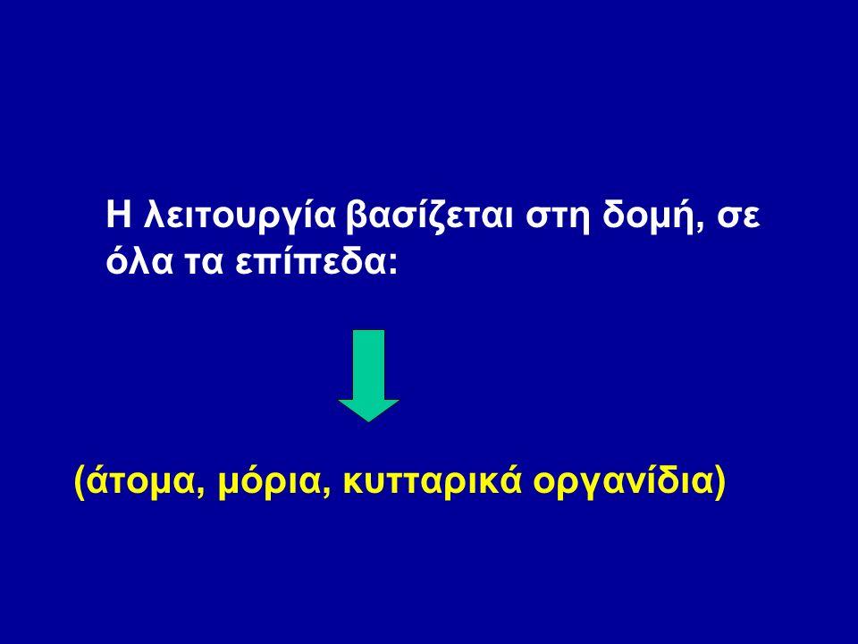 Η λειτουργία βασίζεται στη δομή, σε όλα τα επίπεδα: (άτομα, μόρια, κυτταρικά οργανίδια)