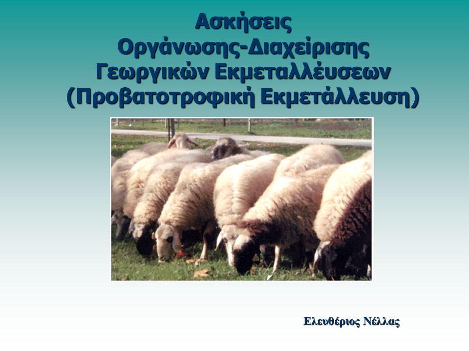 Ασκήσεις Οργάνωσης-Διαχείρισης Γεωργικών Εκμεταλλέυσεων (Προβατοτροφική Εκμετάλλευση) Ελευθέριος Νέλλας