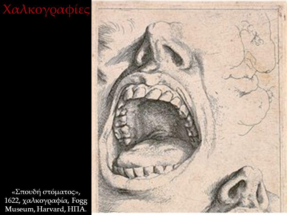 «Σπουδή στόματος», 1622, χαλκογραφία, Fogg Museum, Harvard, ΗΠΑ. Χαλκογραφίες