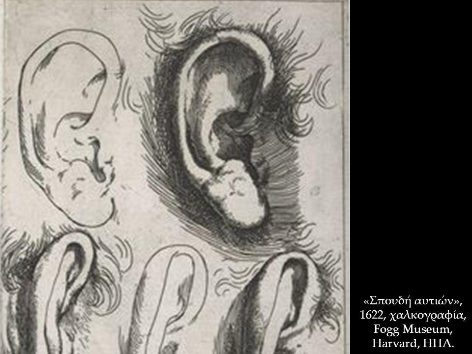 «Σπουδή αυτιών», 1622, χαλκογραφία, Fogg Museum, Harvard, ΗΠΑ.