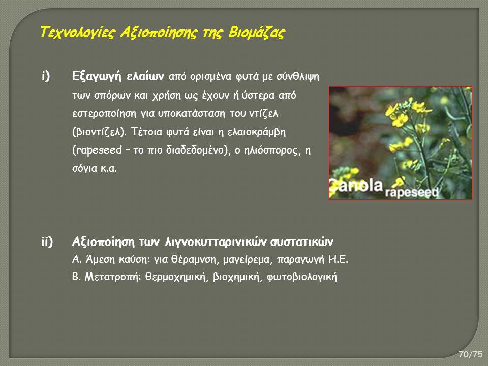 70/75 i)Εξαγωγή ελαίων από ορισμένα φυτά με σύνθλιψη των σπόρων και χρήση ως έχουν ή ύστερα από εστεροποίηση για υποκατάσταση του ντίζελ (βιοντίζελ).