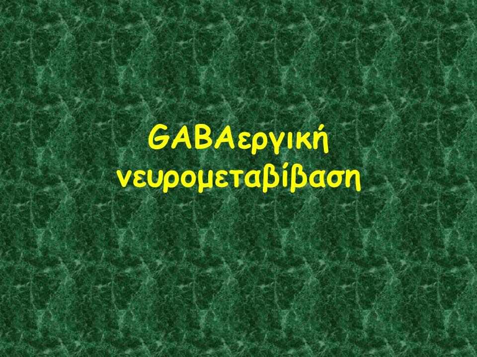 GABAεργική νευρομεταβίβαση