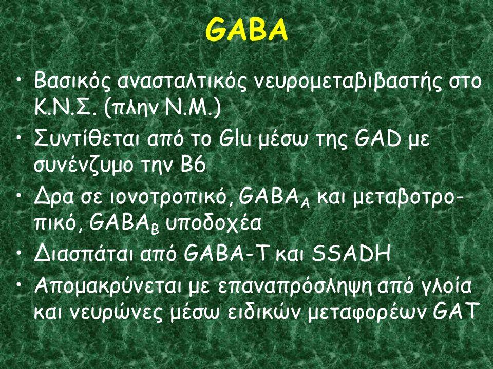 GABA Βασικός ανασταλτικός νευρομεταβιβαστής στο Κ.Ν.Σ.