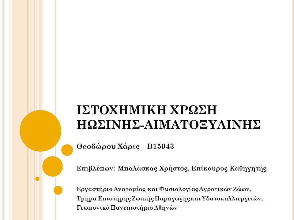 ΙΣΤΟΧΗΜΙΚΗ ΧΡΩΣΗ ΗΩΣΙΝΗΣ-ΑΙΜΑΤΟΞΥΛΙΝΗΣ Θεοδώρου Χάρις – Β15943 Επιβλέπων: Μπαλάσκας Χρήστος, Επίκουρος Καθηγητής Εργαστήριο Ανατομίας και Φυσιολογίας Αγροτικών Ζώων, Τμήμα Επιστήμης Ζωικής Παραγωγής και Υδατοκαλλιεργειών, Γεωπονικό Πανεπιστήμιο Αθηνών