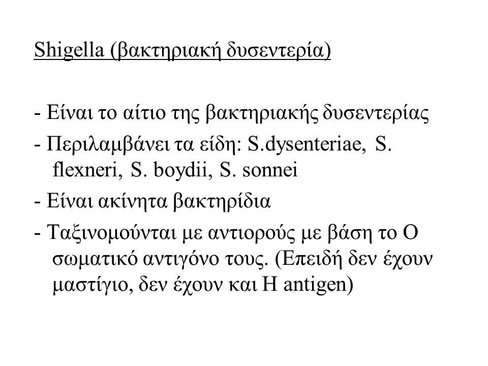 Shigella (βακτηριακή δυσεντερία) - Είναι το αίτιο της βακτηριακής δυσεντερίας - Περιλαμβάνει τα είδη: S.dysenteriae, S. flexneri, S. boydii, S. sonnei