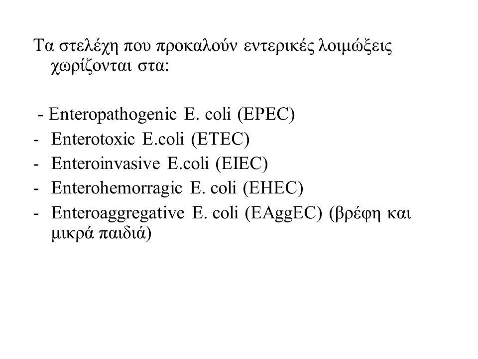 Τα στελέχη που προκαλούν εντερικές λοιμώξεις χωρίζονται στα: - Enteropathogenic E. coli (EPEC) -Enterotoxic E.coli (ETEC) -Enteroinvasive E.coli (EIEC