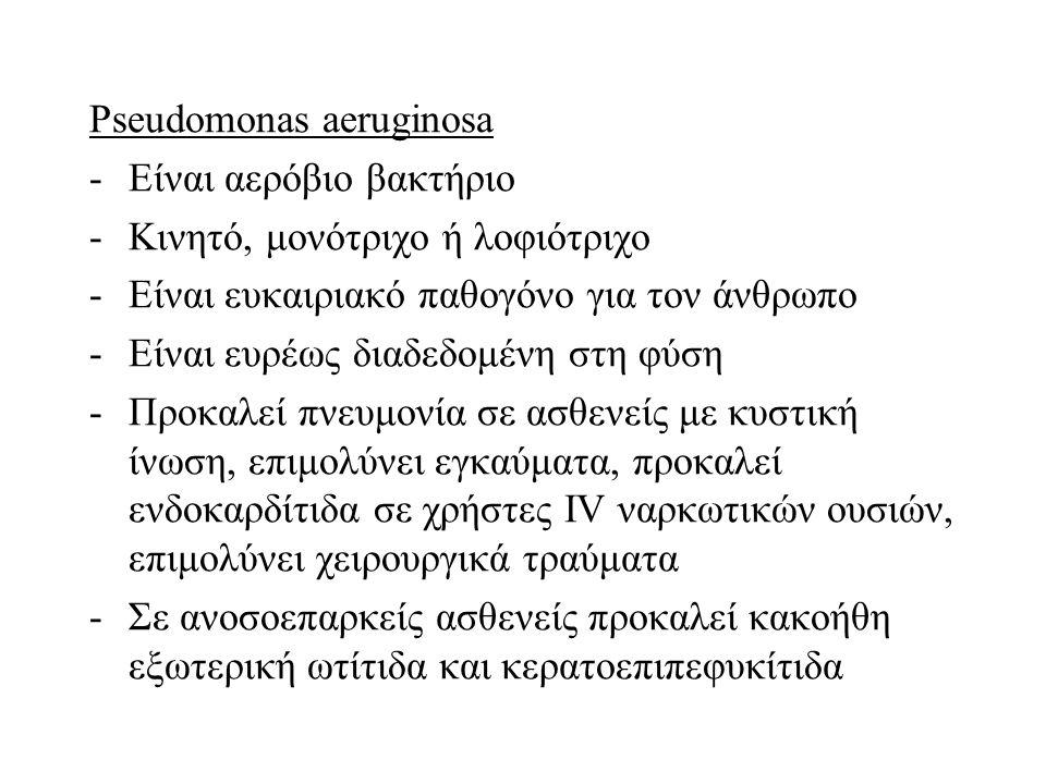 Pseudomonas aeruginosa -Είναι αερόβιο βακτήριο -Κινητό, μονότριχο ή λοφιότριχο -Είναι ευκαιριακό παθογόνο για τον άνθρωπο -Είναι ευρέως διαδεδομένη στ