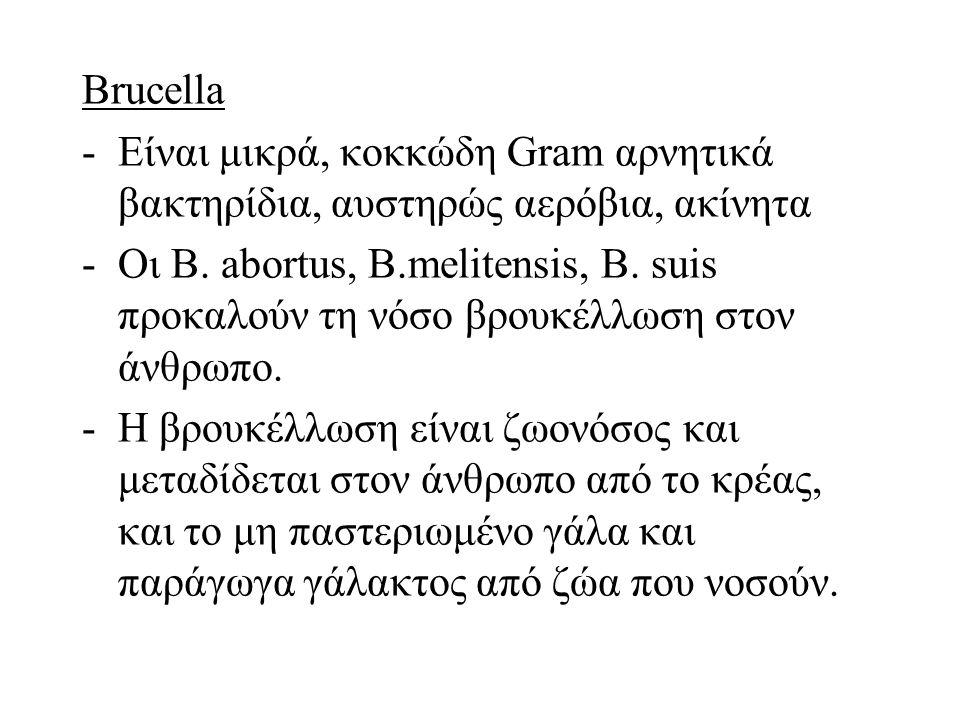 Brucella -Είναι μικρά, κοκκώδη Gram αρνητικά βακτηρίδια, αυστηρώς αερόβια, ακίνητα -Οι B.