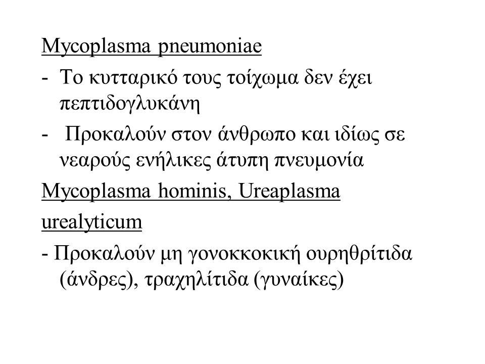 Mycoplasma pneumoniae -Το κυτταρικό τους τοίχωμα δεν έχει πεπτιδογλυκάνη - Προκαλούν στον άνθρωπο και ιδίως σε νεαρούς ενήλικες άτυπη πνευμονία Mycoplasma hominis, Ureaplasma urealyticum - Προκαλούν μη γονοκκοκική ουρηθρίτιδα (άνδρες), τραχηλίτιδα (γυναίκες)