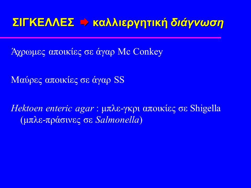 ΣΙΓΚΕΛΛΕΣ  καλλιεργητική διάγνωση Άχρωμες αποικίες σε άγαρ Mc Conkey Μαύρες αποικίες σε άγαρ SS Hektoen enteric agar : μπλε-γκρι αποικίες σε Shigella (μπλε-πράσινες σε Salmonella)