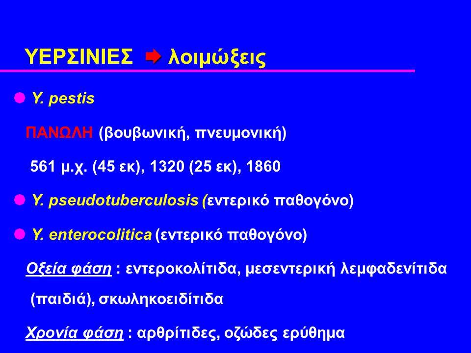  ΥΕΡΣΙΝΙΕΣ  λοιμώξεις  Y. pestis ΠΑΝΩΛΗ (βουβωνική, πνευμονική) 561 μ.χ.