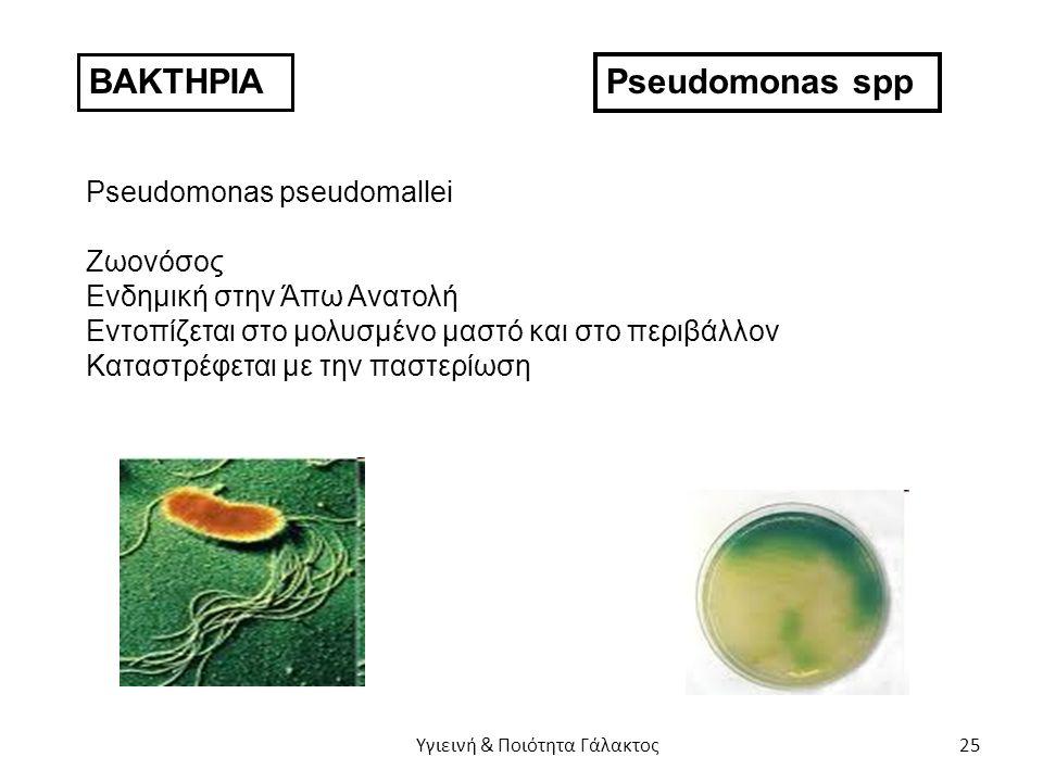 ΒΑΚΤΗΡΙΑ Pseudomonas spp Pseudomonas pseudomallei Ζωονόσος Ενδημική στην Άπω Ανατολή Εντοπίζεται στο μολυσμένο μαστό και στο περιβάλλον Καταστρέφεται με την παστερίωση Υγιεινή & Ποιότητα Γάλακτος 25
