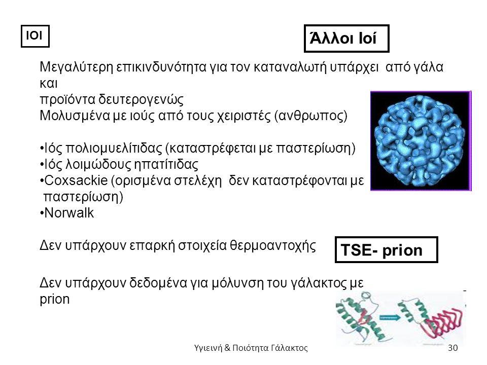 ΙΟΙ Άλλοι Ιοί Μεγαλύτερη επικινδυνότητα για τον καταναλωτή υπάρχει από γάλα και προϊόντα δευτερογενώς Μολυσμένα με ιούς από τους χειριστές (ανθρωπος) Ιός πολιομυελίτιδας (καταστρέφεται με παστερίωση) Ιός λοιμώδους ηπατίτιδας Coxsackie (ορισμένα στελέχη δεν καταστρέφονται με παστερίωση) Norwalk Δεν υπάρχουν επαρκή στοιχεία θερμοαντοχής TSE- prion Δεν υπάρχουν δεδομένα για μόλυνση του γάλακτος με prion Υγιεινή & Ποιότητα Γάλακτος 30
