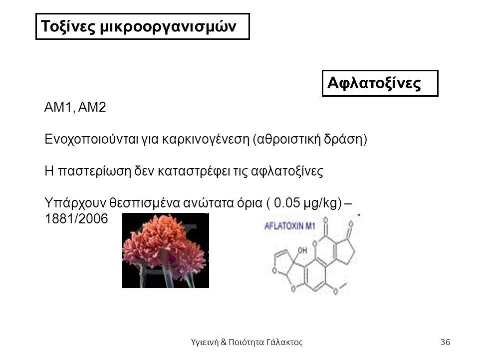 Τοξίνες μικροοργανισμών Αφλατοξίνες ΑΜ1, ΑΜ2 Ενοχοποιούνται για καρκινογένεση (αθροιστική δράση) Η παστερίωση δεν καταστρέφει τις αφλατοξίνες Υπάρχουν θεσπισμένα ανώτατα όρια ( 0.05 μg/kg) – 1881/2006 Υγιεινή & Ποιότητα Γάλακτος 36