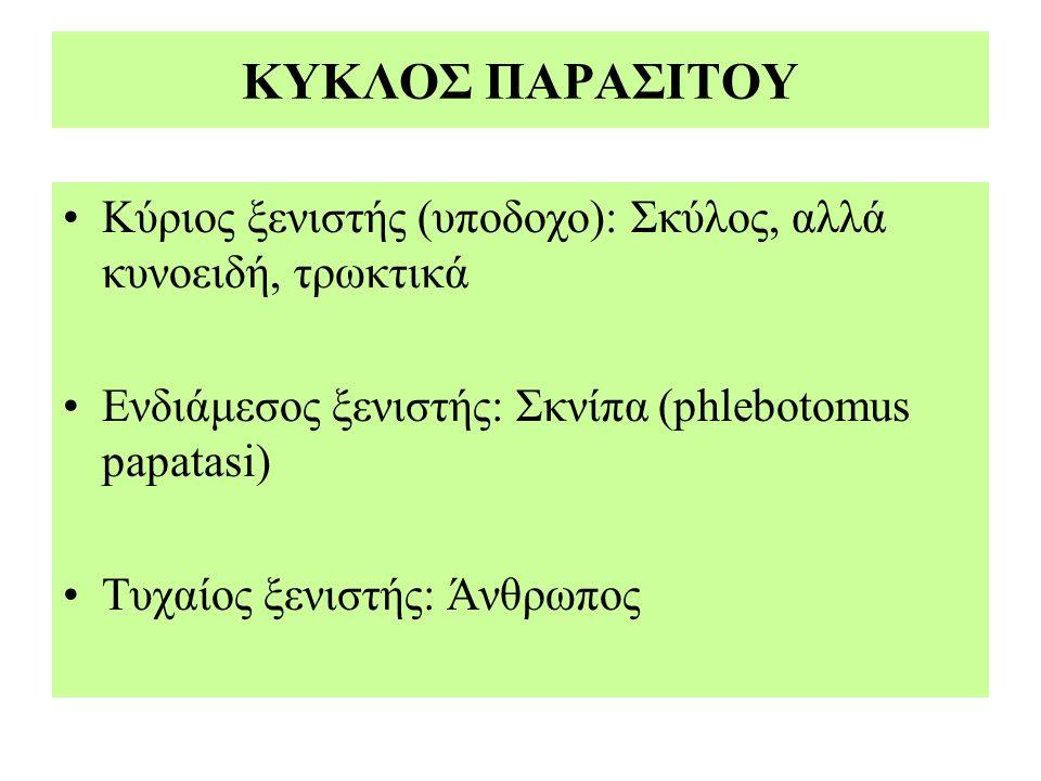 ΚΥΚΛΟΣ ΠΑΡΑΣΙΤΟΥ Κύριος ξενιστής (υποδοχο): Σκύλος, αλλά κυνοειδή, τρωκτικά Ενδιάμεσος ξενιστής: Σκνίπα (phlebotomus papatasi) Τυχαίος ξενιστής: Άνθρω