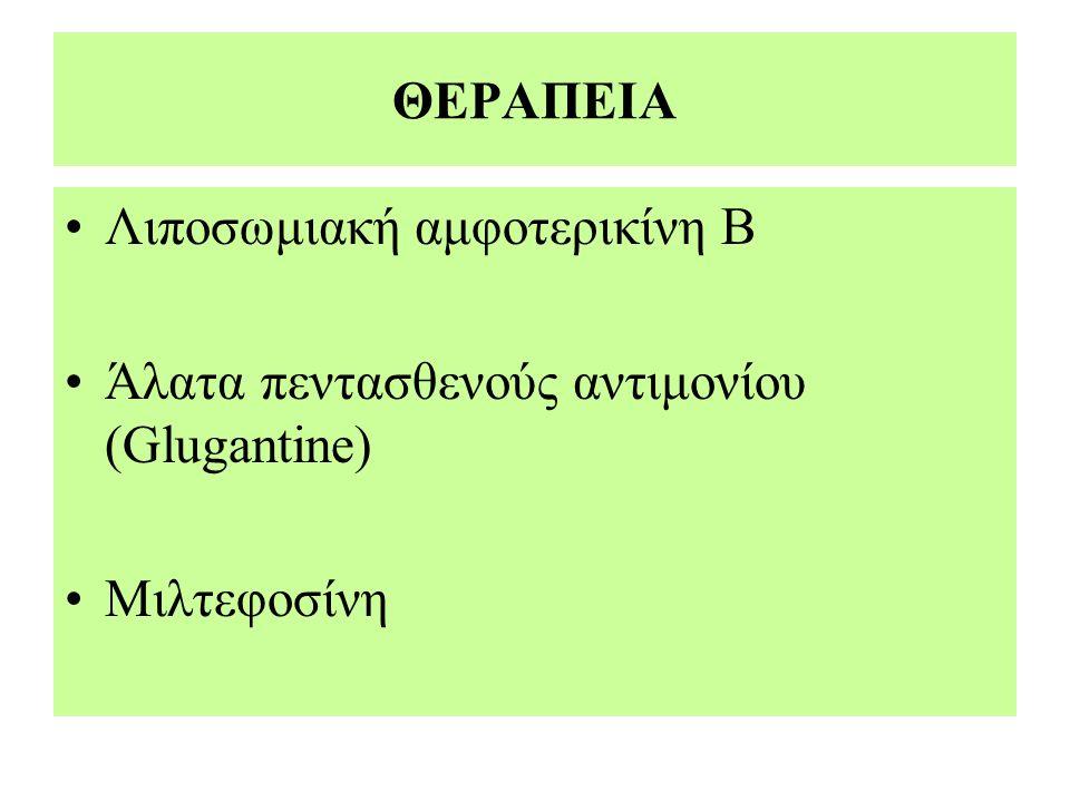 ΘΕΡΑΠΕΙΑ Λιποσωμιακή αμφοτερικίνη Β Άλατα πεντασθενούς αντιμονίου (Glugantine) Μιλτεφοσίνη
