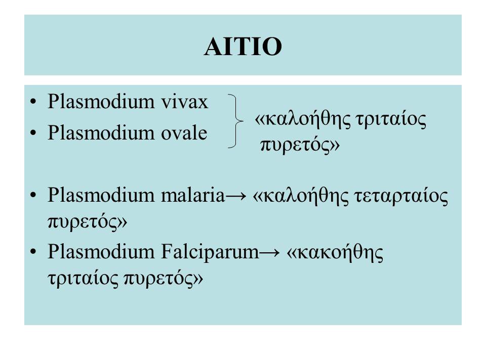 ΑΙΤΙΟ Plasmodium vivax Plasmodium ovale Plasmodium malaria → «καλοήθης τεταρταίος πυρετός» Plasmodium Falciparum → «κακοήθης τριταίος πυρετός» «καλοήθ