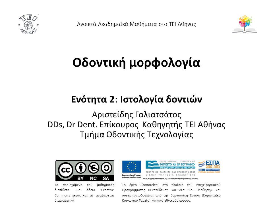 Οδοντική μορφολογία Ενότητα 2: Ιστολογία δοντιών Αριστείδης Γαλιατσάτος DDs, Dr Dent.
