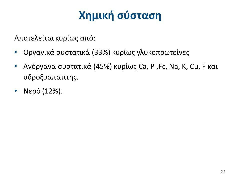 Χημική σύσταση Αποτελείται κυρίως από: Οργανικά συστατικά (33%) κυρίως γλυκοπρωτείνες Ανόργανα συστατικά (45%) κυρίως Ca, Ρ,Fc, Na, Κ, Cu, F και υδροξυαπατίτης.