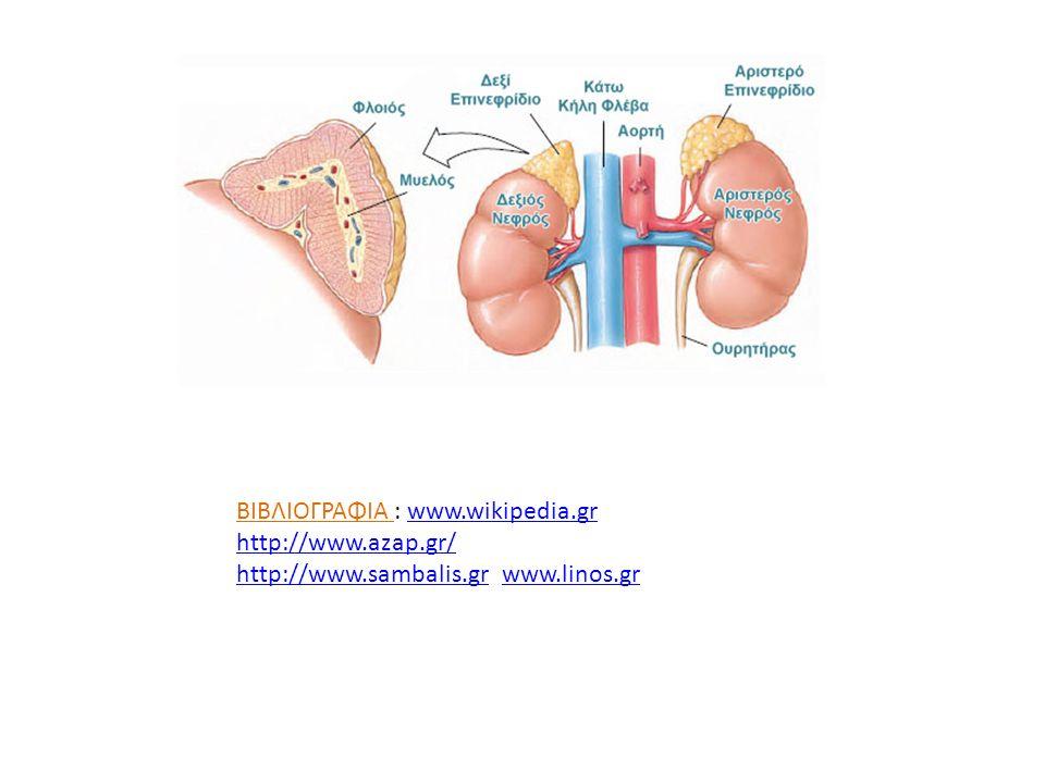 ΒΙΒΛΙΟΓΡΑΦΙΑ : www.wikipedia.gr http://www.azap.gr/www.wikipedia.gr http://www.azap.gr/ http://www.sambalis.grhttp://www.sambalis.gr www.linos.grwww.l