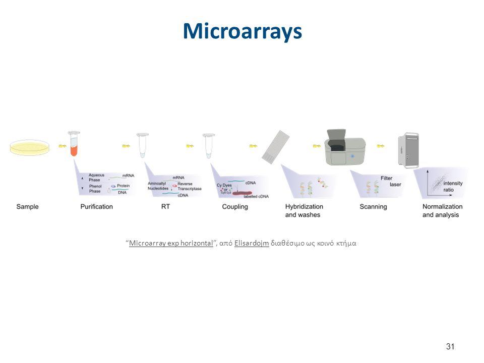 "Microarrays 31 ""Microarray exp horizontal"", από Elisardojm διαθέσιμο ως κοινό κτήμαMicroarray exp horizontalElisardojm"