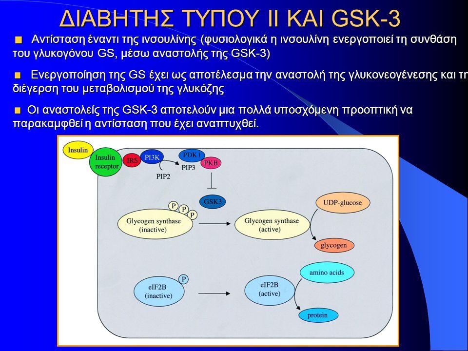 ΔΙΑΒΗΤΗΣ ΤΥΠΟΥ ΙΙ KAI GSK-3 Αντίσταση έναντι της ινσουλίνης (φυσιολογικά η ινσουλίνη ενεργοποιεί τη συνθάση του γλυκογόνου GS, μέσω αναστολής της GSK-3) Αντίσταση έναντι της ινσουλίνης (φυσιολογικά η ινσουλίνη ενεργοποιεί τη συνθάση του γλυκογόνου GS, μέσω αναστολής της GSK-3) Ενεργοποίηση της GS έχει ως αποτέλεσμα την αναστολή της γλυκονεογένεσης και τη διέγερση του μεταβολισμού της γλυκόζης Ενεργοποίηση της GS έχει ως αποτέλεσμα την αναστολή της γλυκονεογένεσης και τη διέγερση του μεταβολισμού της γλυκόζης Οι αναστολείς της GSK-3 αποτελούν μια πολλά υποσχόμενη προοπτική να παρακαμφθεί η αντίσταση που έχει αναπτυχθεί.