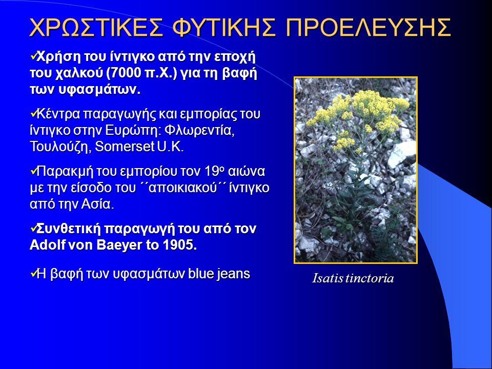 ΧΡΩΣΤΙΚΕΣ ΦΥΤΙΚΗΣ ΠΡΟΕΛΕΥΣΗΣ Χρήση του ίντιγκο από την εποχή του χαλκού (7000 π.Χ.) για τη βαφή των υφασμάτων.