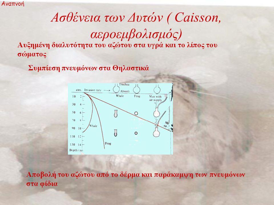 Ασθένεια των Δυτών ( Caisson, αεροεμβολισμός) Αναπνοή Αυξημένη διαλυτότητα του αζώτου στα υγρά και το λίπος του σώματος Συμπίεση πνευμόνων στα Θηλαστικά Αποβολή του αζώτου από το δέρμα και παράκαμψη των πνευμόνων στα φίδια