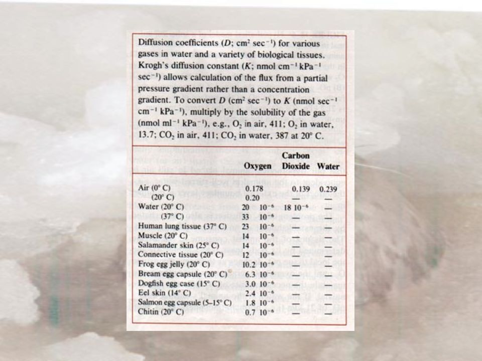 Διάχυση Αναπνοή H σταθερά διάχυσης του Krogh Κ ( nmole/cm kPa sec) είναι μια άλλη μορφή της D.