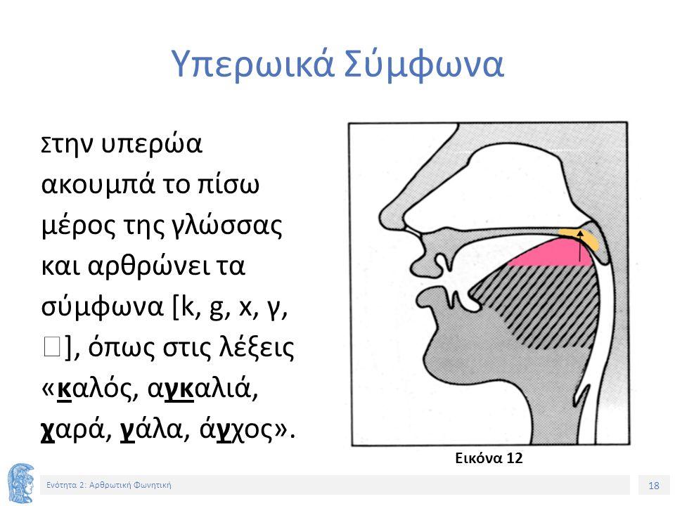 18 Ενότητα 2: Αρθρωτική Φωνητική Υπερωικά Σύμφωνα Σ την υπερώα ακουμπά το πίσω μέρος της γλώσσας και αρθρώνει τα σύμφωνα [k, g, x, γ,  ], όπως στις λέξεις «καλός, αγκαλιά, χαρά, γάλα, άγχος».