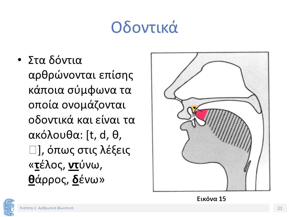21 Ενότητα 2: Αρθρωτική Φωνητική Οδοντικά Στα δόντια αρθρώνονται επίσης κάποια σύμφωνα τα οποία ονομάζονται οδοντικά και είναι τα ακόλουθα: [t, d, θ,  ], όπως στις λέξεις «τέλος, ντύνω, θάρρος, δένω» Εικόνα 15