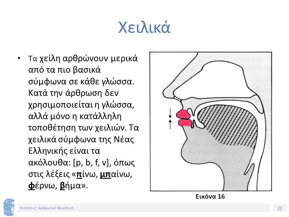 22 Ενότητα 2: Αρθρωτική Φωνητική Χειλικά Τα χείλη αρθρώνουν μερικά από τα πιο βασικά σύμφωνα σε κάθε γλώσσα.