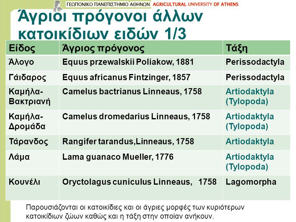 Άγριοι πρόγονοι άλλων κατοικίδιων ειδών 1/3 ΕίδοςΆγριος πρόγονοςΤάξη ΆλογοEquus przewalskii Poliakow, 1881Perissodactyla ΓάιδαροςEquus africanus Fintzinger, 1857Perissodactyla Καμήλα- Βακτριανή Camelus bactrianus Linneaus, 1758Artiodaktyla (Tylopoda) Καμήλα- Δρομάδα Camelus dromedarius Linneaus, 1758Artiodaktyla (Tylopoda) ΤάρανδοςRangifer tarandus,Linneaus, 1758Artiodaktyla ΛάμαLama guanaco Mueller, 1776Artiodaktyla (Tylopoda) ΚουνέλιOryctolagus cuniculus Linneaus, 1758Lagomorpha Παρουσιάζονται οι κατοικίδιες και οι άγριες μορφές των κυριότερων κατοικίδιων ζώων καθώς και η τάξη στην οποίαν ανήκουν.