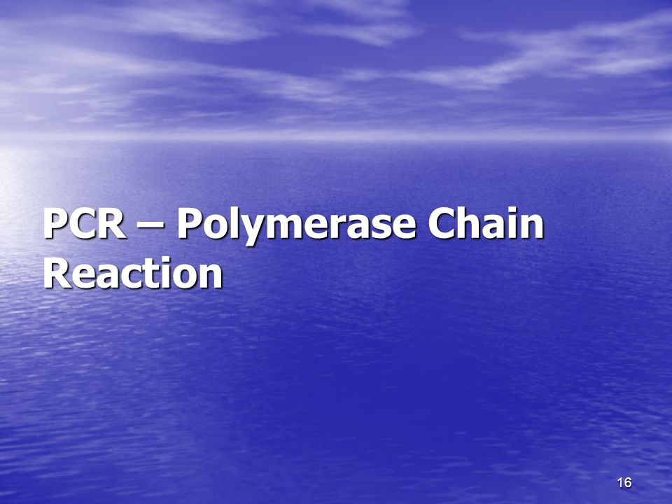 16 PCR – Polymerase Chain Reaction