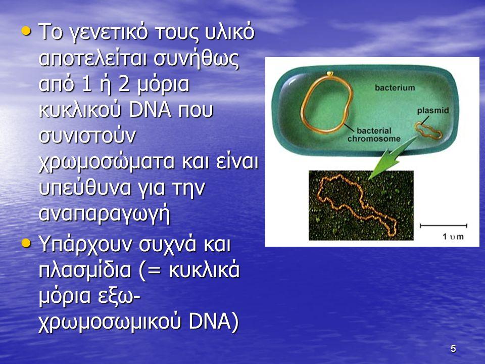 5 Το γενετικό τους υλικό αποτελείται συνήθως από 1 ή 2 μόρια κυκλικού DNA που συνιστούν χρωμοσώματα και είναι υπεύθυνα για την αναπαραγωγή Το γενετικό τους υλικό αποτελείται συνήθως από 1 ή 2 μόρια κυκλικού DNA που συνιστούν χρωμοσώματα και είναι υπεύθυνα για την αναπαραγωγή Υπάρχουν συχνά και πλασμίδια (= κυκλικά μόρια εξω - χρ ω μοσωμικού DNA) Υπάρχουν συχνά και πλασμίδια (= κυκλικά μόρια εξω - χρ ω μοσωμικού DNA)