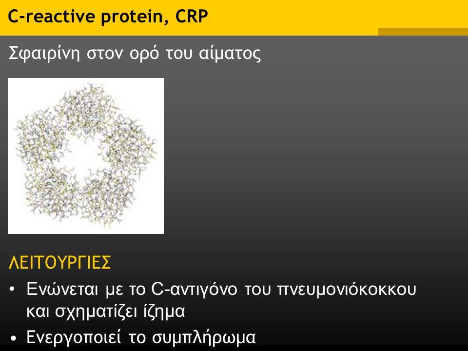 C-reactive protein, CRP Σφαιρίνη στον ορό του αίματος ΛΕΙΤΟΥΡΓΙΕΣ Ενώνεται με το C-αντιγόνο του πνευμονιόκοκκου και σχηματίζει ίζημα Ενεργοποιεί το συμπλήρωμα