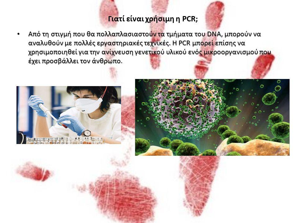 Αυτή η διαδικασία καταλήγει στον πολλαπλασιασμό του DNA, με κάθε ένα από τα καινούργια μόρια να περιέχει έναν παλιό και έναν καινούργιο κλώνο DNA. Ο κ