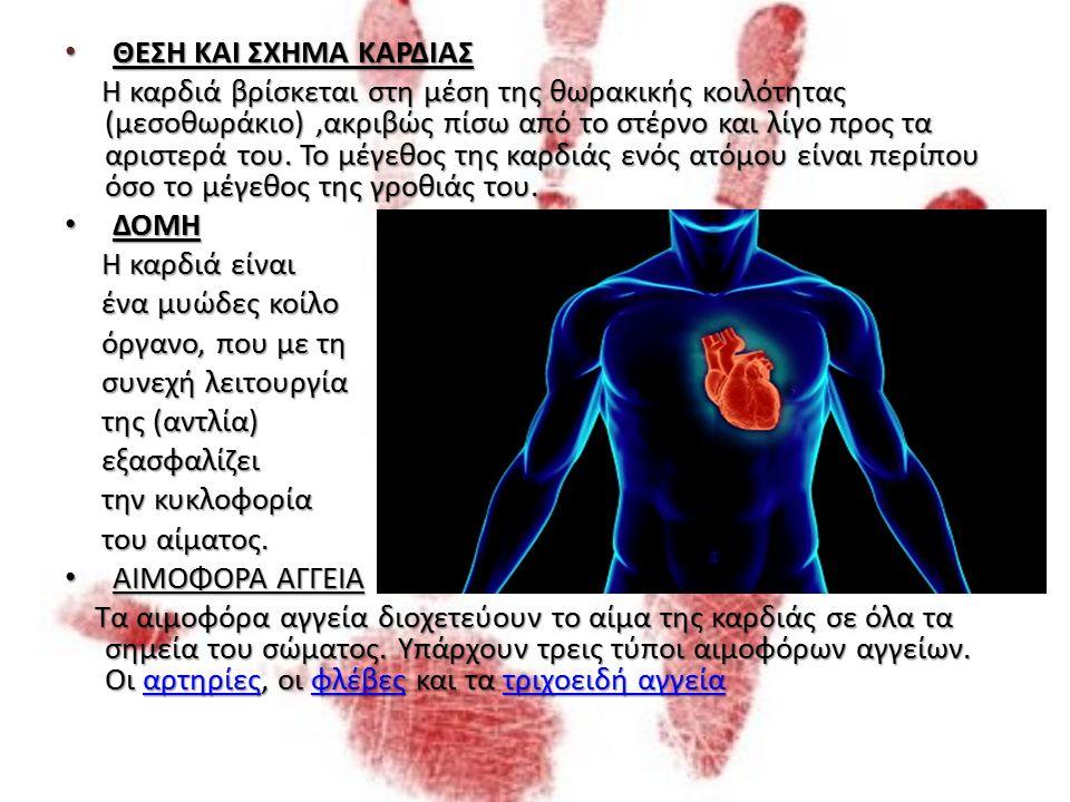 ΟΡΓΑΝΩΣΗ ΚΥΚΛΟΦΟΡΙΚΟΥ ΣΥΣΤΗΜΑΤΟΣ ΤΟ ΚΑΡΔΙΟΑΓΓΕΙΑΚΟ ΣΥΣΤΗΜΑ ΤΟ ΚΑΡΔΙΟΑΓΓΕΙΑΚΟ ΣΥΣΤΗΜΑ Το κυκλοφορικό σύστημα, μέσα στο οποίο το αίμα κινείται σε ολόκληρο το σώμα, αποτελείται από τέσσερις τύπους κοίλων υποδοχέων: Το κυκλοφορικό σύστημα, μέσα στο οποίο το αίμα κινείται σε ολόκληρο το σώμα, αποτελείται από τέσσερις τύπους κοίλων υποδοχέων: 1.Την καρδιά (κεντρική αντλία) 1.Την καρδιά (κεντρική αντλία) 2.Τις αρτηρίες (προσαγωγά αγγεία), που διανέμουν το αίμα στους ιστούς 2.Τις αρτηρίες (προσαγωγά αγγεία), που διανέμουν το αίμα στους ιστούς 3.Τα τριχοειδή αγγεία, ένα πολύ λεπτό δίκτυο πολύ μικρών αγγείων μέσα στους ιστούς του σώματος.