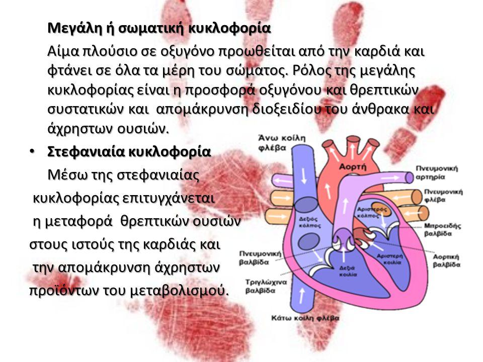 Αρτηρίες Αρτηρίες Οι αρτηρίες μεταφέρουν αίμα από την καρδιά προς τους ιστούς.