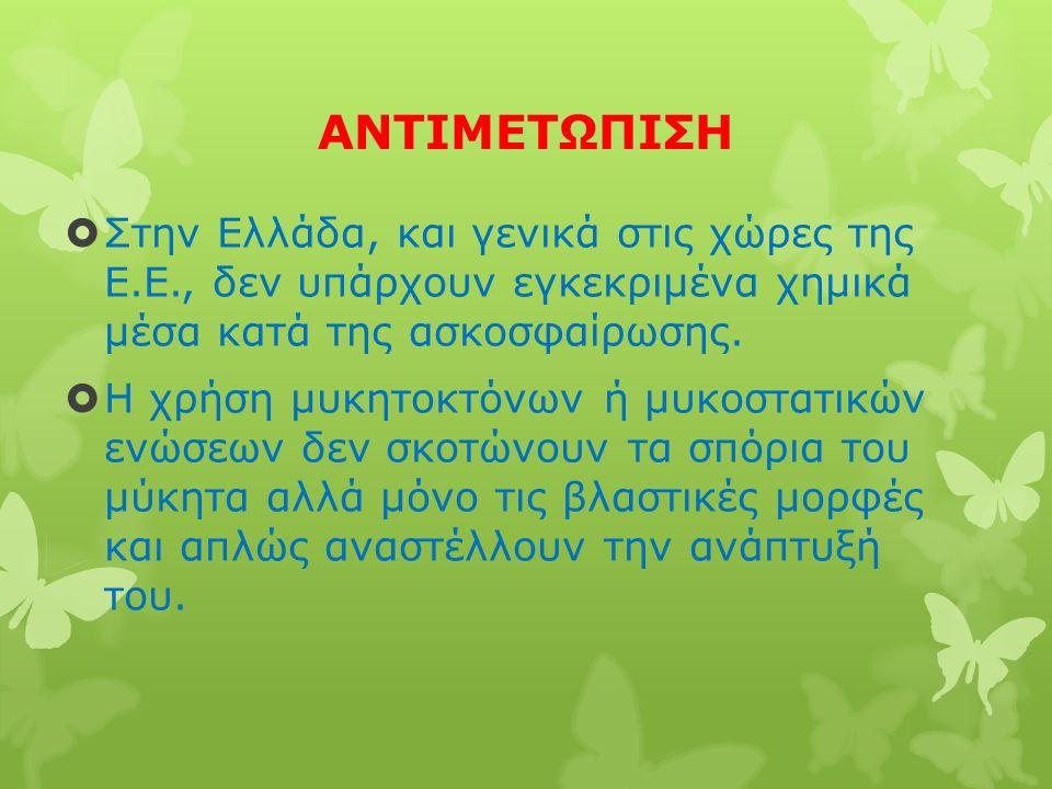 ΑΝΤΙΜΕΤΩΠΙΣΗ  Στην Ελλάδα, και γενικά στις χώρες της Ε.Ε., δεν υπάρχουν εγκεκριμένα χημικά μέσα κατά της ασκοσφαίρωσης.