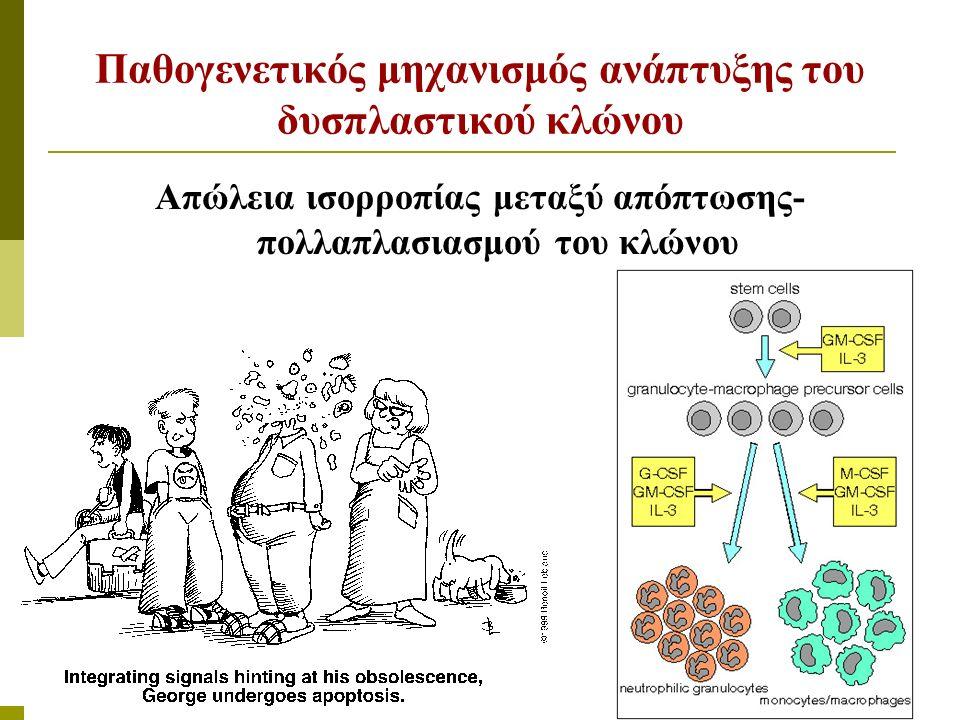 Μορφολογικές αλλοιώσεις περιφερικού αίματος Ελλιπής κοκκίωση - λόβωση ουδετεροφίλων (Pelger-Huet), κύτταρα ακαθόριστης σειράς Μακροκυττάρωση, στοματοκυττάρωση, δίμορφος πληθυσμός Μεγάλα αιμοπετάλια πλημμελής κοκκίωση Παράδοξο φαινόμενο: κυτταροβριθής μυελός με περιφερική κυτταροπενία
