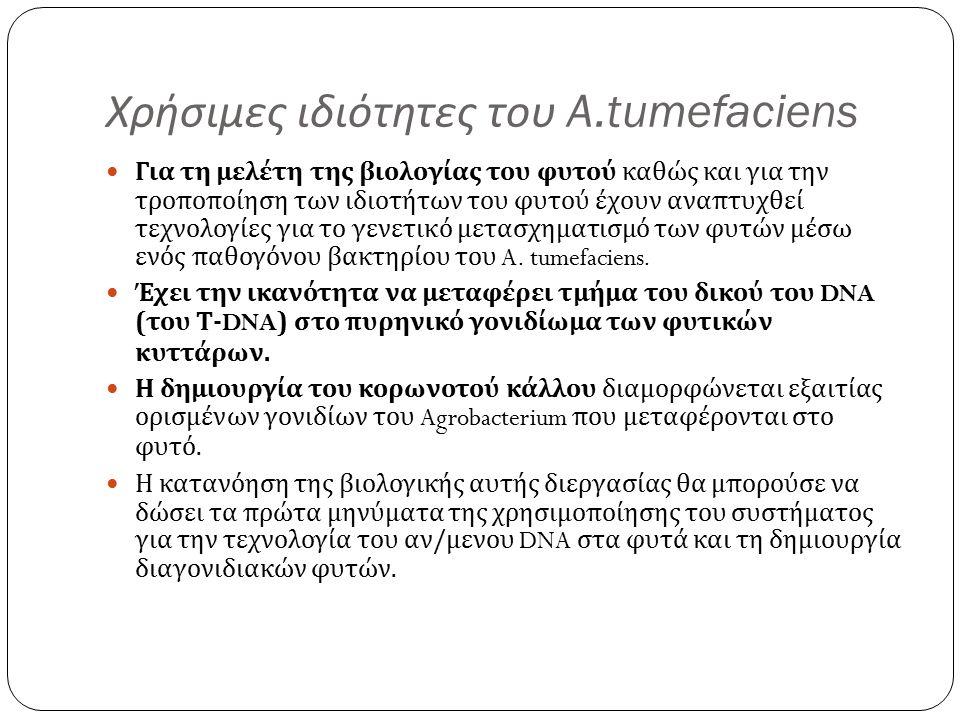 Χρήσιμες ιδιότητες του A.tumefaciens Για τη μελέτη της βιολογίας του φυτού καθώς και για την τροποποίηση των ιδιοτήτων του φυτού έχουν αναπτυχθεί τεχνολογίες για το γενετικό μετασχηματισμό των φυτών μέσω ενός παθογόνου βακτηρίου του A.