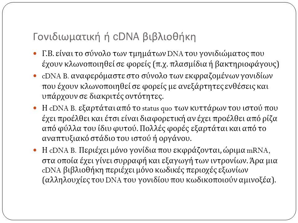 Γονιδιωματική ή cDNA βιβλιοθήκη Γ. Β.