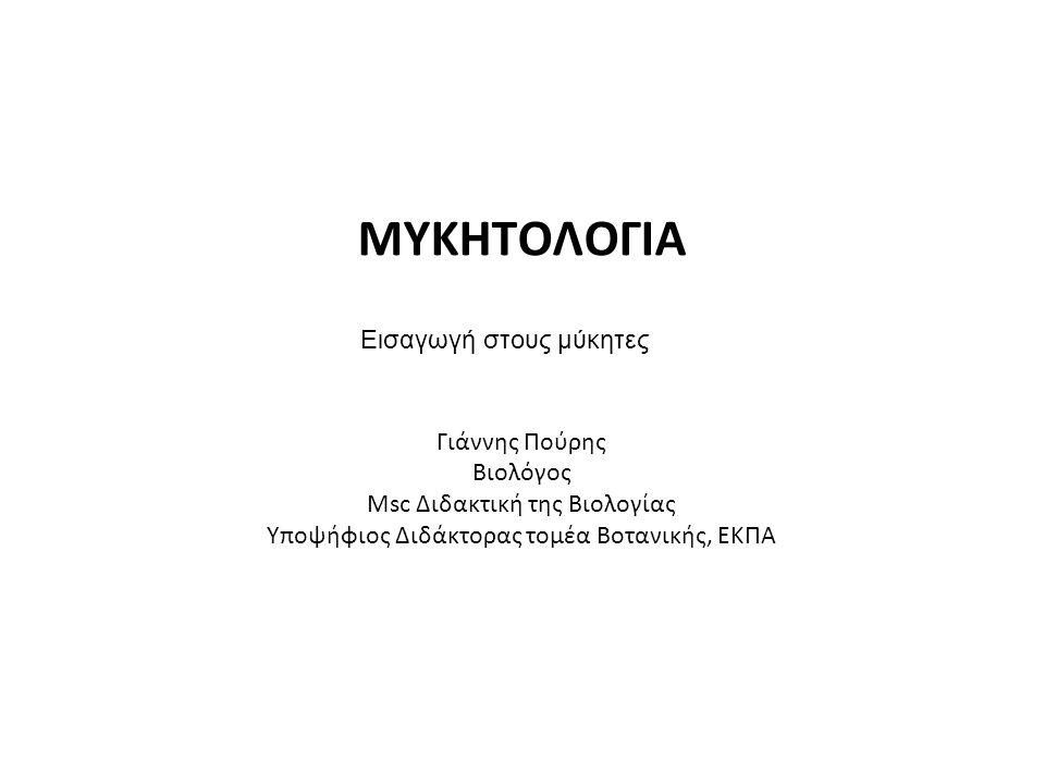 Μύκητες (Fungi ) Ο όρος 'μύκης' χρησιμοποιήθηκε για πρώτη φορά από το Θεόφραστο(3 ος αιώνας π.Χ.) 1