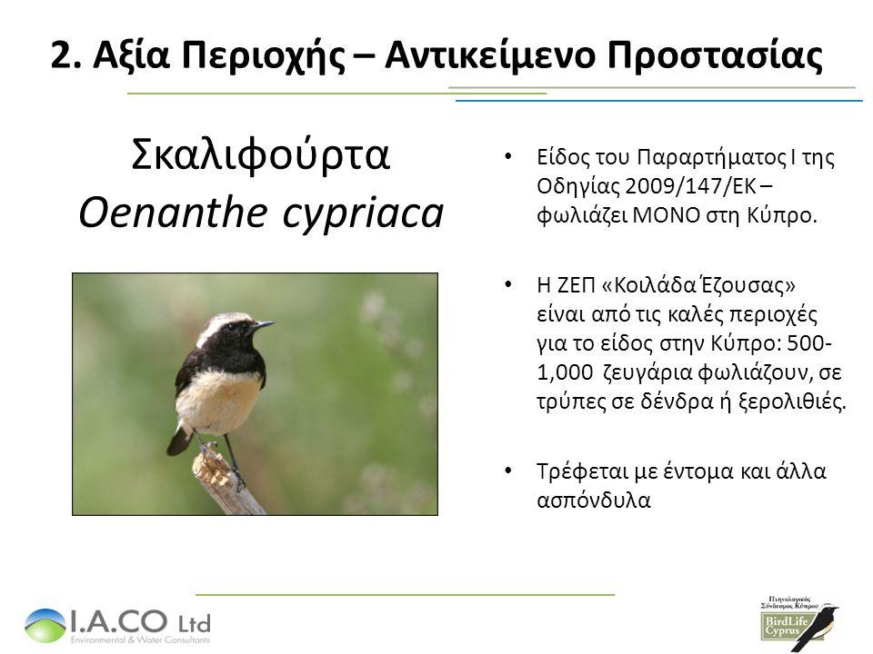 Τα αποδημητικά είδη καθορισμού είναι: Μελισσοφάγος Merops apiaster Δεν είναι είδος του Παράρτηματος 1 της Οδηγίας 79/409/ΕΚ, αλλά είναι είδος το οποίο περνά από Κύπρο σε σημαντικούς αριθμούς: 2,500-5,000 άτομα.