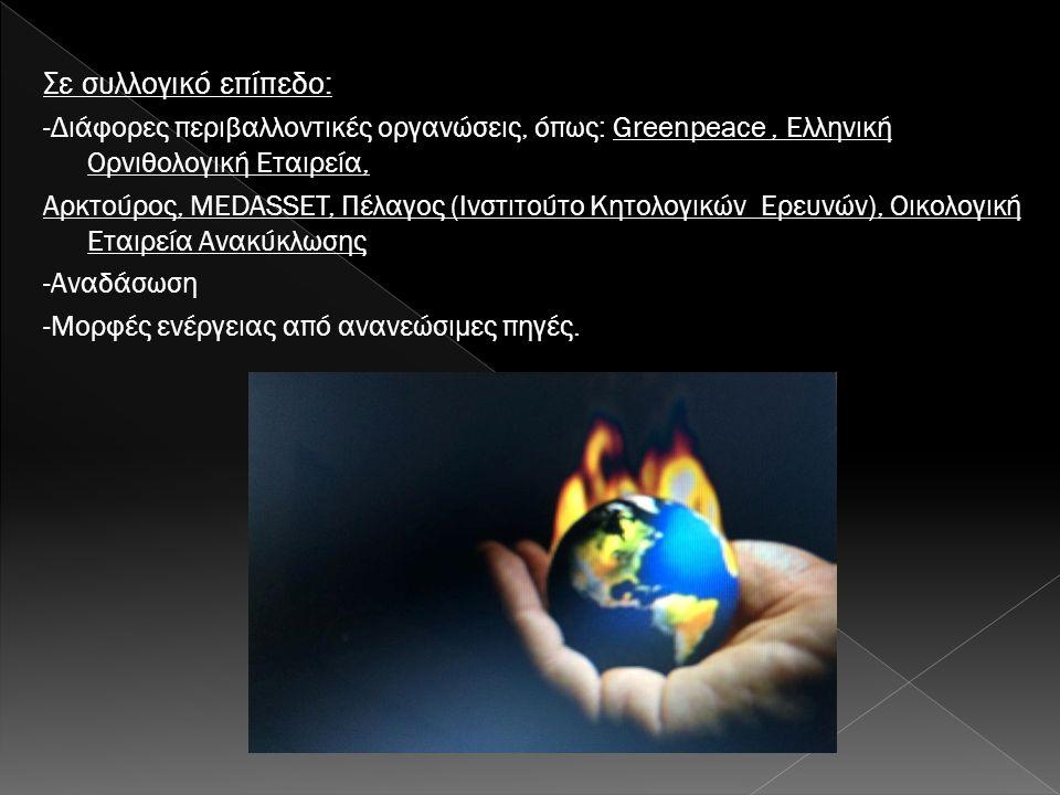 Σε συλλογικό επίπεδο: -Διάφορες περιβαλλοντικές οργανώσεις, όπως: Greenpeace, Ελληνική Ορνιθολογική Εταιρεία, Αρκτούρος, MEDASSET, Πέλαγος (Ινστιτούτο Κητολογικών Ερευνών), Οικολογική Εταιρεία Ανακύκλωσης -Αναδάσωση -Μορφές ενέργειας από ανανεώσιμες πηγές.