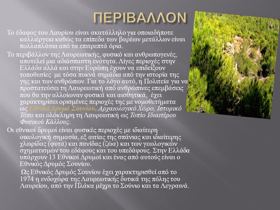 Το έδαφος του Λαυρίου είναι ακατάλληλο για οποιαδήποτε καλλιέργεια καθώς τα επίπεδα των βαρέων μετάλλων είναι πολλαπλάσια από τα επιτρεπτά όρια.