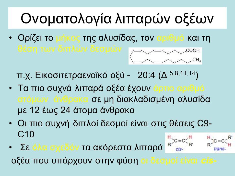 Ονοματολογία λιπαρών οξέων Ορίζει το μήκος της αλυσίδας, τον αριθμό και τη θέση των διπλών δεσμών π.χ.